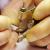 Morioka Seiko Instruments -
