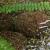 KOYOH Co., LTD. - Eco-Bio Block Creates Clear Water by Natto (Fermented Soybean) Bacillus - Image 1