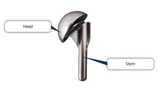 Nakashima Medical Co., Ltd. - Shoulder Joint Prosthesis
