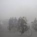 PM2.5 Harbin City in China