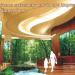 Shinoda Plasma - SHiPLA 02