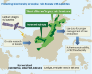Japan developing rainforest evaluation system to protect biological diversity in Southeast Asia