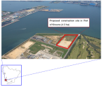 Sumitomo Corp - Construction Site for Biomass Power Plant
