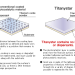 YIELD Co., Ltd. - Titanystar - Comparison between other photocatalytic materials