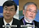 Shimon Sakaguchi MD, PhD & Yoshinori Ohsumi DSc