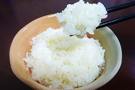 Cooked-Rice-01