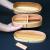 Japanese Traditional Bento Box and Tableware - Maturi no Eemon - Image 3
