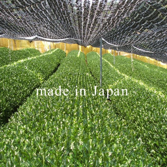 Honjien - Japanese Tea 2