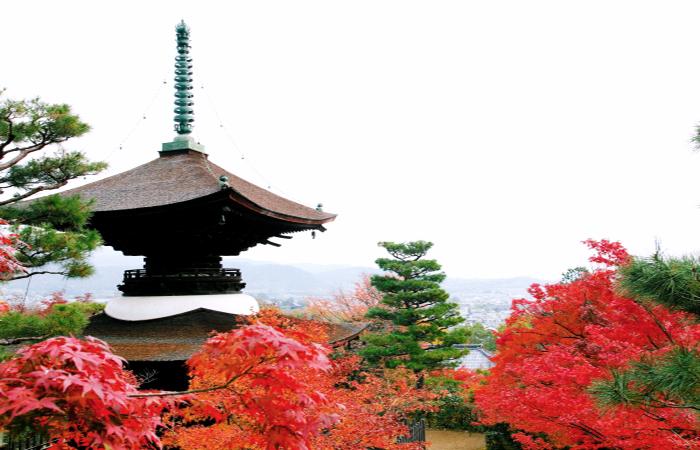 Kyoto Arashiyama - Daikakuji