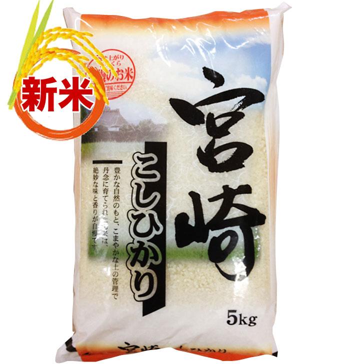 Cub 25 production Miyazaki from Koshi Hikari 5 kg rice rice rice Koshihikari rice