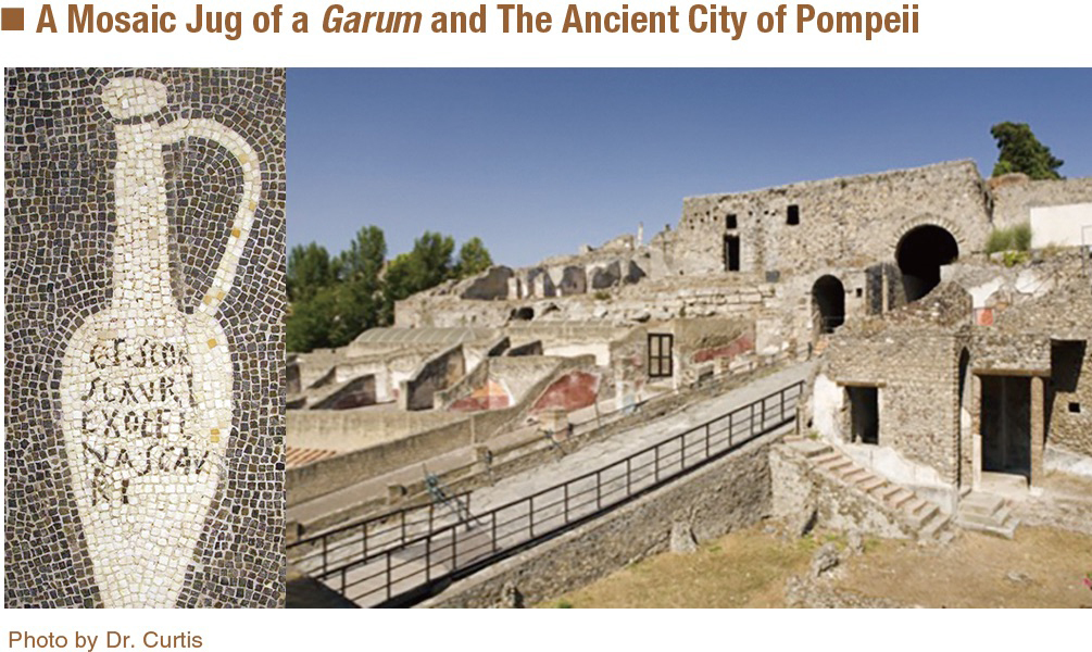 A Mosaic Jug of a Garum and The Ancient City of Pompeii