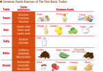 Common Foods Sources of The Five Basic Tastes