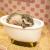 Dollhouses for Small Pet - Bathroom