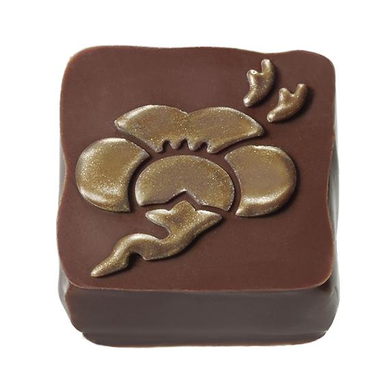 Mary Chocolate - Salted Plum