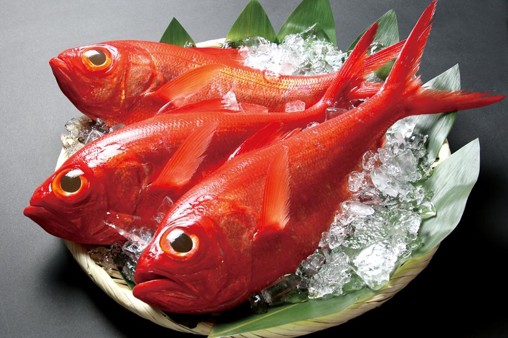 Chiba's Fish Kimmedai