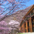 Chuzenji Kanaya Hotel - Situated near the shore of the Lake Chuzenjiko in Nikko - Image 1