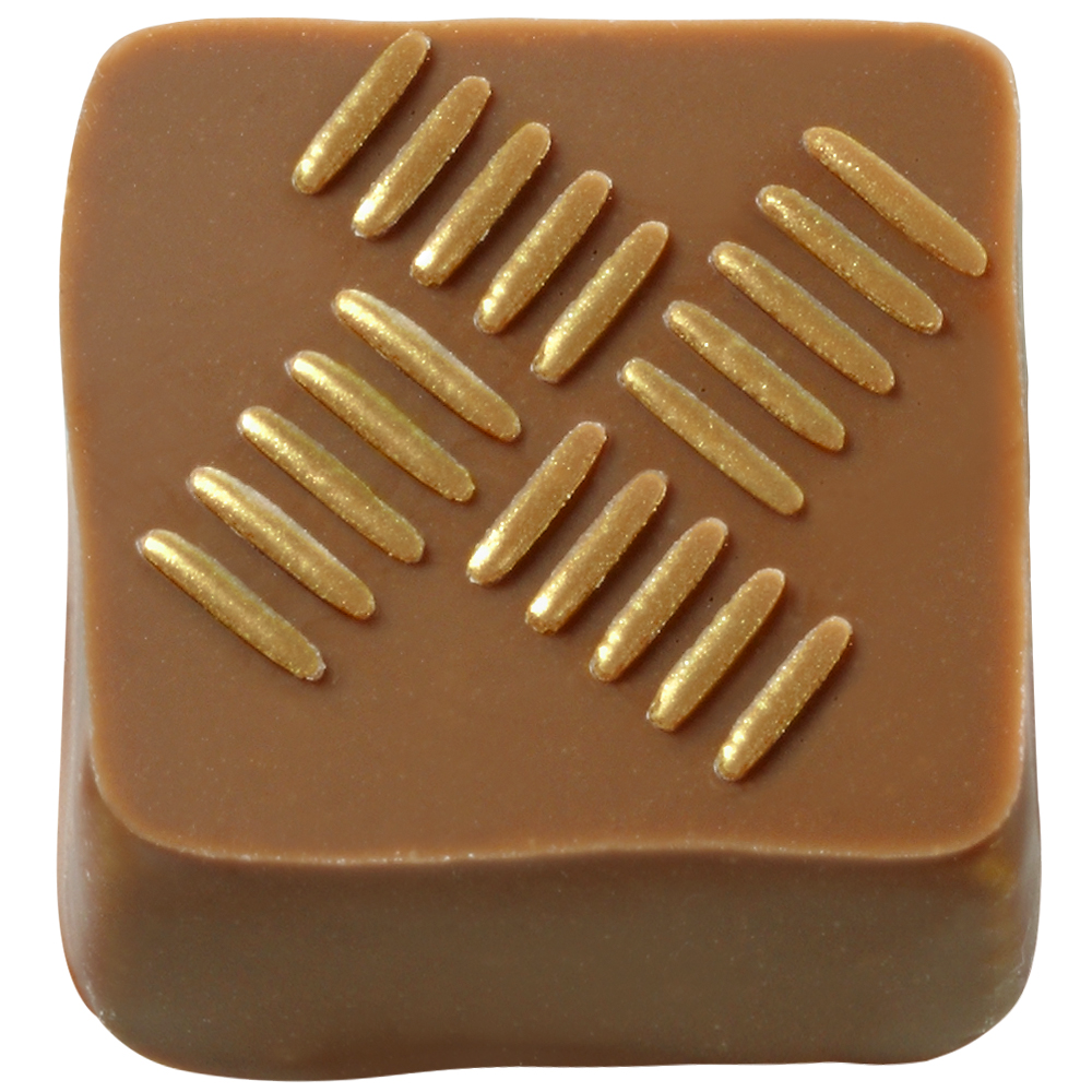 Mary Chocolate - Five flavor praline