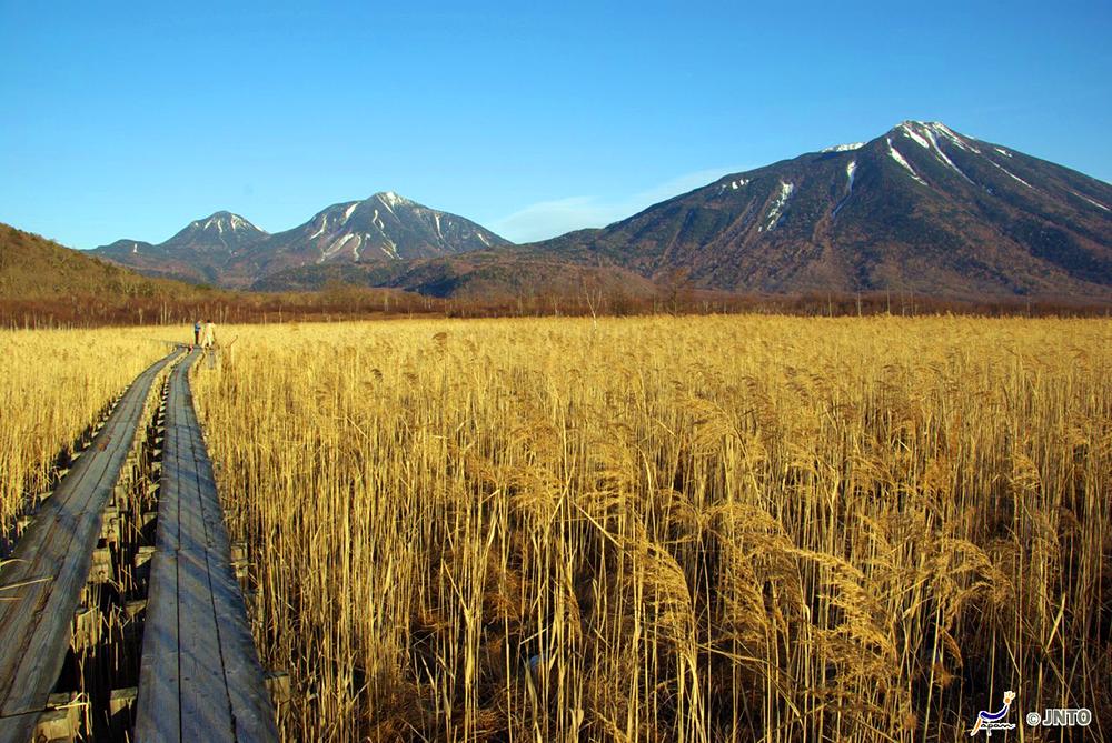 Senjogahara Marshland in Oku-Nikko