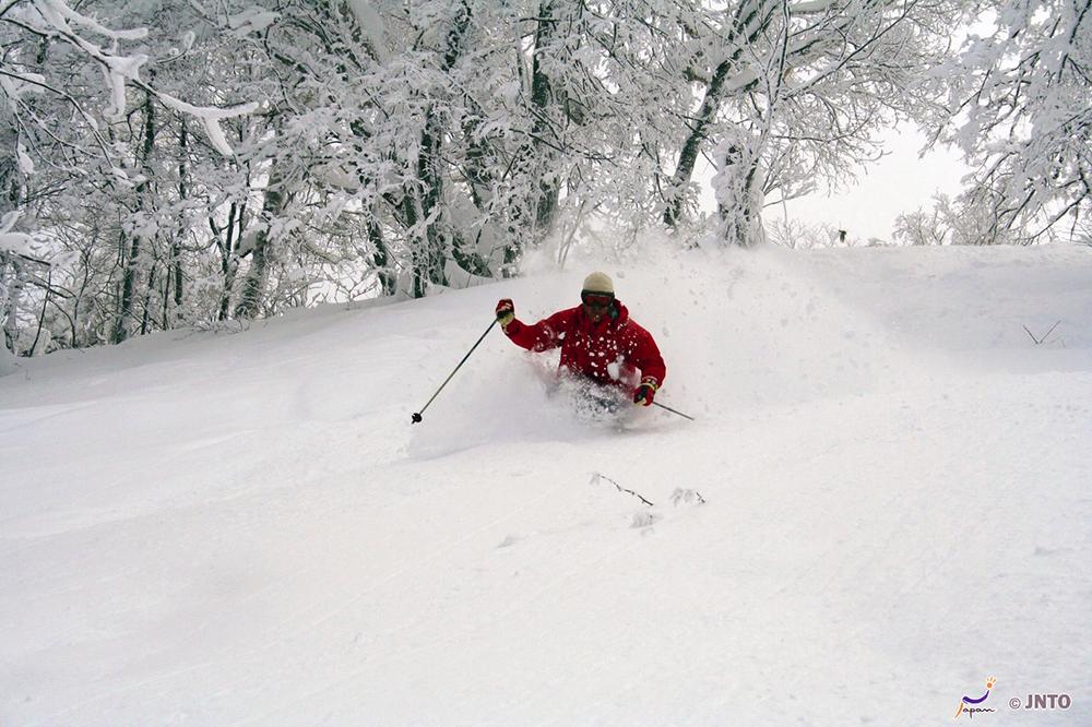 Skiing in Furano, Hokkaido