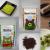 02 - Kanei Hitokoto Seicha\'s Japanese Tea Products