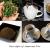 03 - New-style Japanese Tea